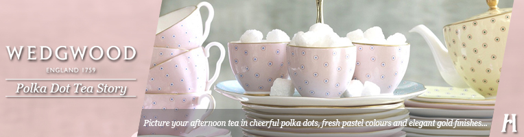 Wedgwood Polka Dot Tea Story