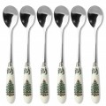Set 6 Tea Spoons (16246)