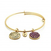 Good Fortune Birthstone Collection Amethyst Gold Plated Bracelet (23026)