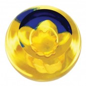 Floral Charms Daffodil Paperweight (23968)