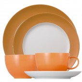 Thomas China Place Setting - 5 piece (24410)