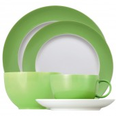 Thomas China Place Setting - 5 piece (24447)