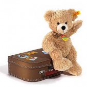 Cosy Baby and Friends Fyn  Bear in Suitcase (6586)