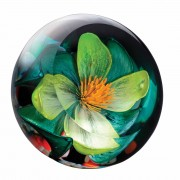 Floral Lime Sensation Paperweight (22319)