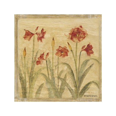 and Table Linen Pimpernel Mats Floral 6 Amaryllis Medium Placemats