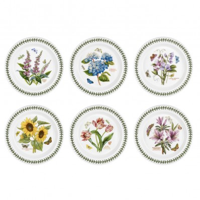 Dinner Plate 25cm Set of 6 Assorted (6384)